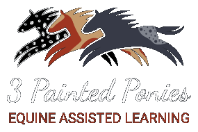 3 Painted Ponies, Equine Assisted Learning